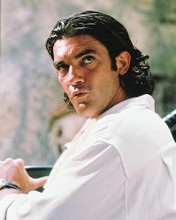 This is an image of 216695 Antonio Banderas Photograph & Poster