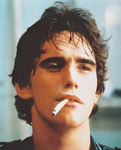 This is an image of 216855 Matt Dillon Photograph & Poster