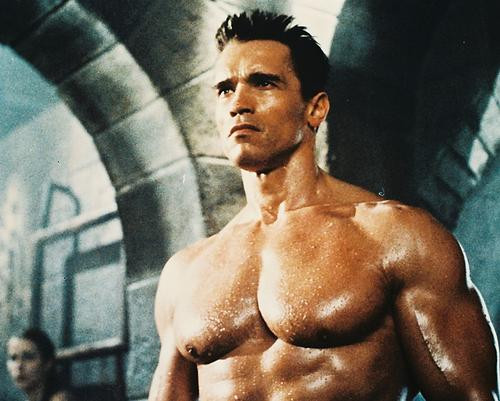 This is an image of 210307 Arnold Schwarzenegger Photograph & Poster