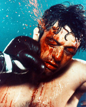 This is an image of 223106 Robert De Niro Photograph & Poster