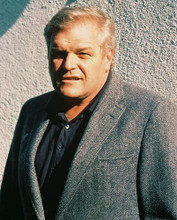 This is an image of 223972 Brian Dennehy Photograph & Poster