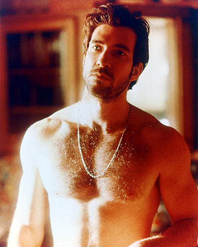 This is an image of 224093 Dylan McDermott Photograph & Poster