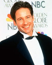 This is an image of 224848 David Duchovny Photograph & Poster