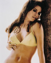 This is an image of 225493 Raquel Welch Photograph & Poster