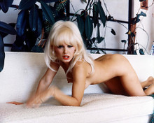 This is an image of 221824 Mamie Van Doren Photograph & Poster