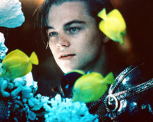 This is an image of 223112 Leonardo Dicaprio Photograph & Poster