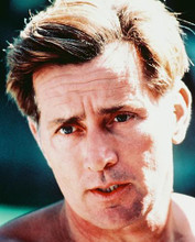 This is an image of 238956 Martin Sheen Photograph & Poster