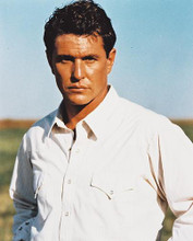 This is an image of 233254 Tom Berenger Photograph & Poster