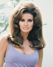 This is an image of 233498 Raquel Welch Photograph & Poster