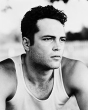 This is an image of 168121 Vince Vaughn Photograph & Poster