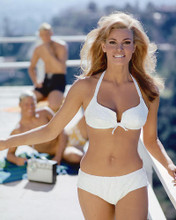 This is an image of 236067 Raquel Welch Photograph & Poster