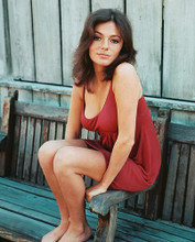 This is an image of 240357 Jacqueline Bisset Photograph & Poster