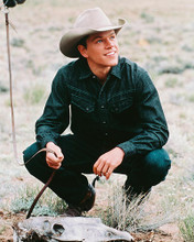 This is an image of 241215 Matt Damon Photograph & Poster
