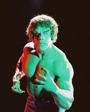 This is an image of 241251 Lou Ferrigno Photograph & Poster