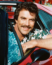 This is an image of 241861 Tom Selleck Photograph & Poster