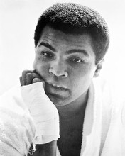 This is an image of 170343 Muhammad Ali Photograph & Poster