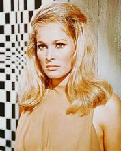 This is an image of 243271 Ursula Andress Photograph & Poster