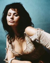 This is an image of 243407 Sophia Loren Photograph & Poster