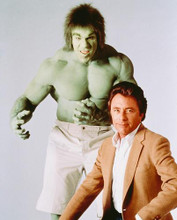 This is an image of 244343 The Incredible Hulk Photograph & Poster