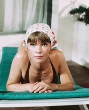 This is an image of 244468 Glenda Jackson Photograph & Poster