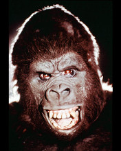 This is an image of 244887 King Kong Photograph & Poster