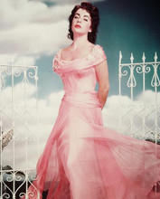 This is an image of 245010 Elizabeth Taylor Photograph & Poster