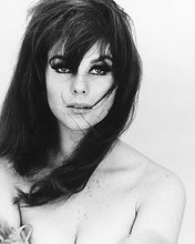 This is an image of 170675 Ann-Margret Photograph & Poster