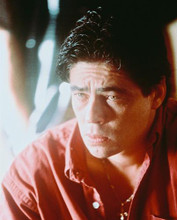 This is an image of 245503 Benecio Del Toro Photograph & Poster