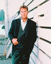 This is an image of 246079 Don Johnson Photograph & Poster