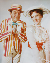 This is an image of 246780 Julie Andrews & Dick Van Dyke Photograph & Poster
