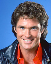 This is an image of 248529 David Hasselhoff Photograph & Poster