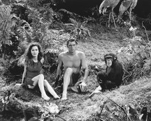 This is an image of 171338 Tarzan Photograph & Poster