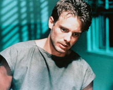 This is an image of 237058 Michael Biehn Photograph & Poster