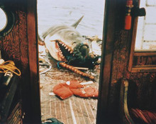 This is an image of 243692 Jaws Photograph & Poster