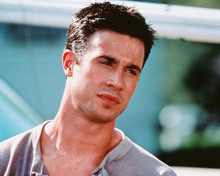 This is an image of 247492 Freddie Prinze Jr Photograph & Poster