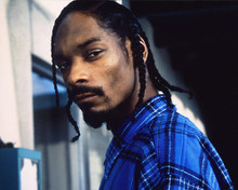 This is an image of 247927 Snoop Doggy Dogg Photograph & Poster