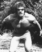This is an image of 171433 Lou Ferrigno Photograph & Poster