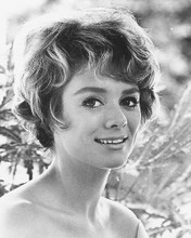 This is an image of 171473 Inger Stevens Photograph & Poster