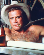 This is an image of 250308 Lee Majors Photograph & Poster