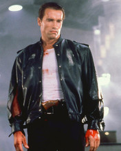 This is an image of 255112 Arnold Schwarzenegger Photograph & Poster