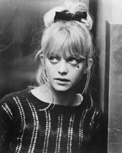 This is an image of 172678 Goldie Hawn Photograph & Poster