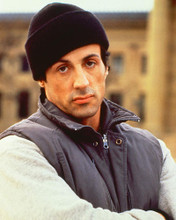 This is an image of 255455 Sylvester Stallone Photograph & Poster