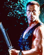 This is an image of 258713 Arnold Schwarzenegger Photograph & Poster
