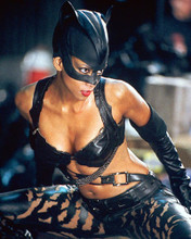 This is an image of 258928 Halle Berry Photograph & Poster