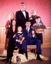 This is an image of 262690 The Addams Family Photograph & Poster