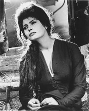This is an image of 175469 Sophia Loren Photograph & Poster