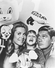 This is an image of 177704 Bewitched Photograph & Poster