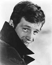 This is an image of 178178 Jean-Paul Belmondo Photograph & Poster