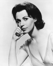 This is an image of 178185 Claire Bloom Photograph & Poster