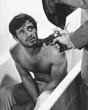 This is an image of 178565 Jean-Paul Belmondo Photograph & Poster